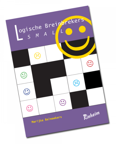 Logische Breinbrekers Small